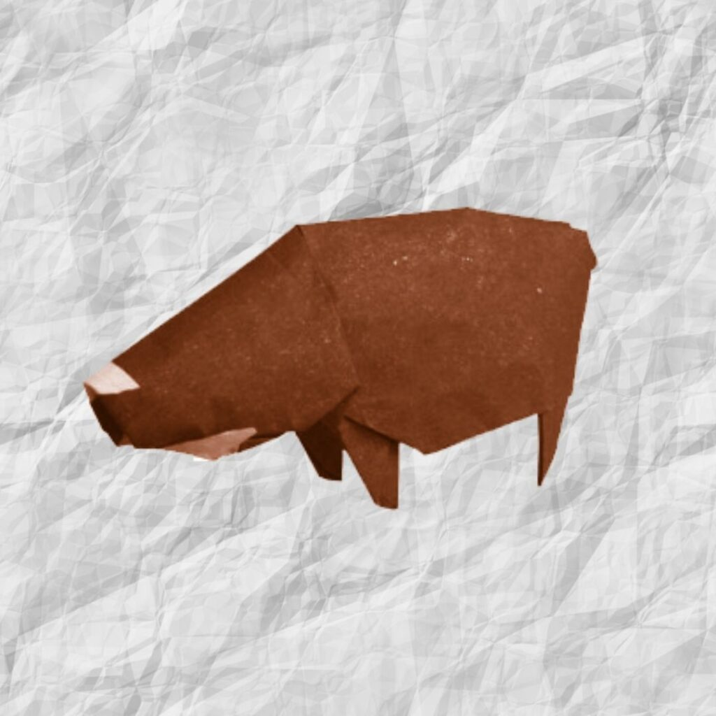 origami wild pig