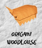 tutorial-origami-woodlouse